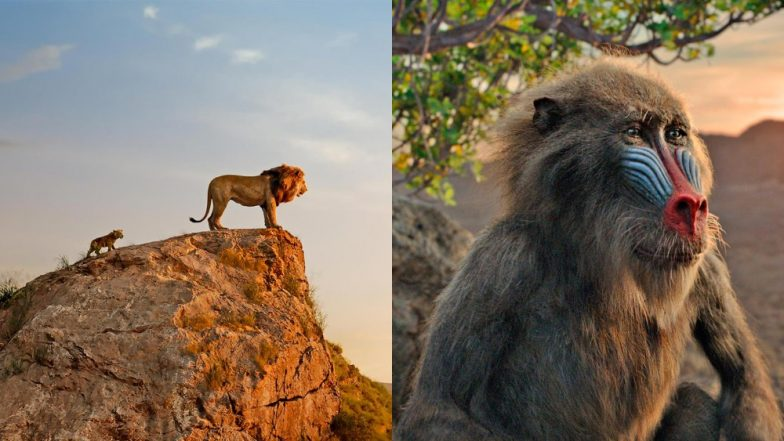 Disney Has Dropped New Stills From Jon Favreau's Upcoming The Lion King Movie - Check Them Out!