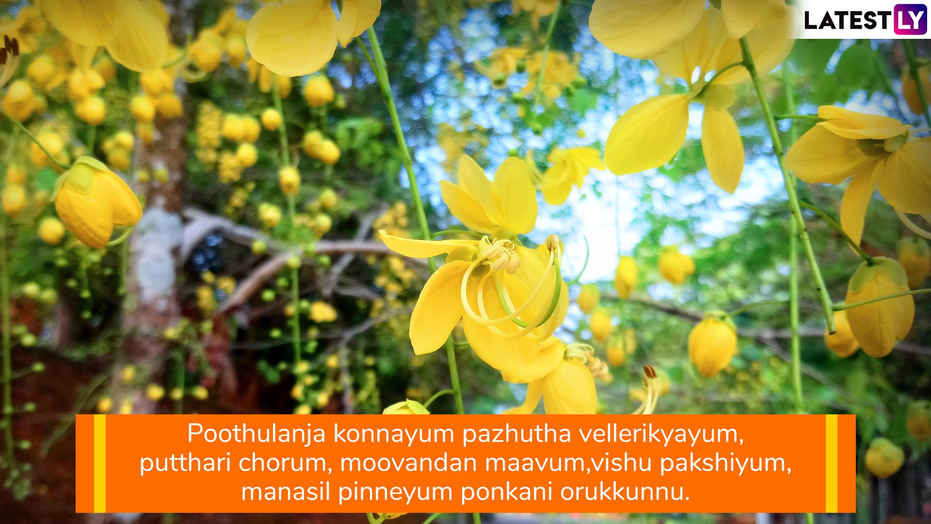 happy vishu messages in malayalam whatsapp stickers