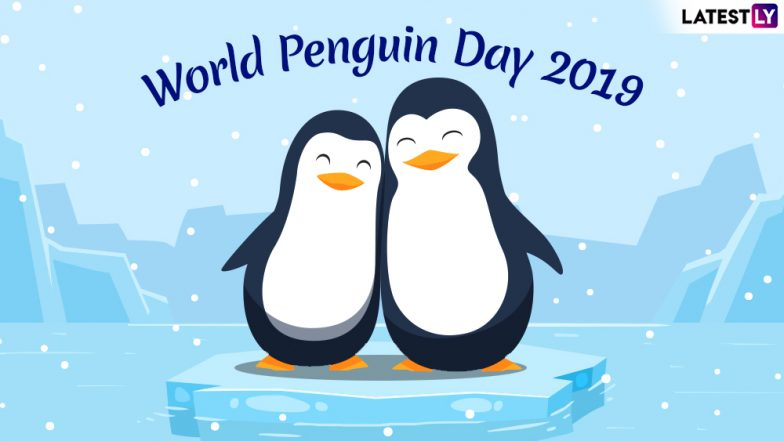 World Penguin Day 2019: History, Significance of the Day Meant for Awareness About the Endangered Aquatic Birds