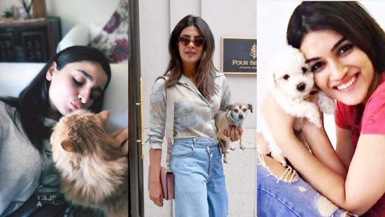 National Pet Day 2019: When Alia Bhatt, Priyanka Chopra, Kriti Sanon Posed with Their Animal Friends and Blessed Your Feed with Cuteness -  View Pics