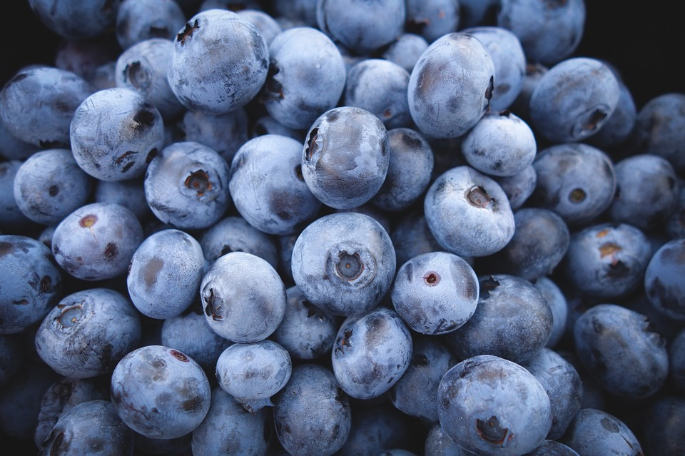 Weight Loss Tip of the Week: How to Use Blueberries to Lose Weight (Watch Video)