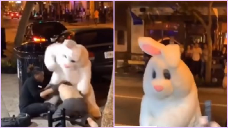Easter Bunny to the Rescue! Rabbit 'Vigilante' Gallantly Hops In to Defend Woman in Orlando Street Fight (Watch Bizarre Viral Video)