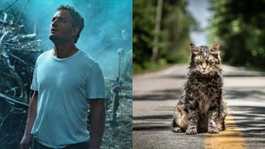 Pet Sematary: All the References to Stephen King's It, Cujo and The Shining That You Can Spot in the Film (SPOILER ALERT)