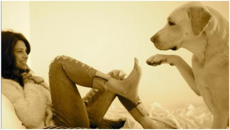 Jennifer Winget's Picture With Stray Dogs From Her Vacation Is Just PAW-FECT