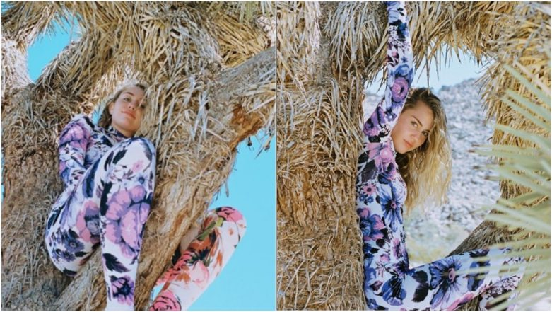 Miley Cyrus Posts Photo Sitting on 'Protected' Joshua Tree; Outraged Fans File Petition Seeking Apology From Singer