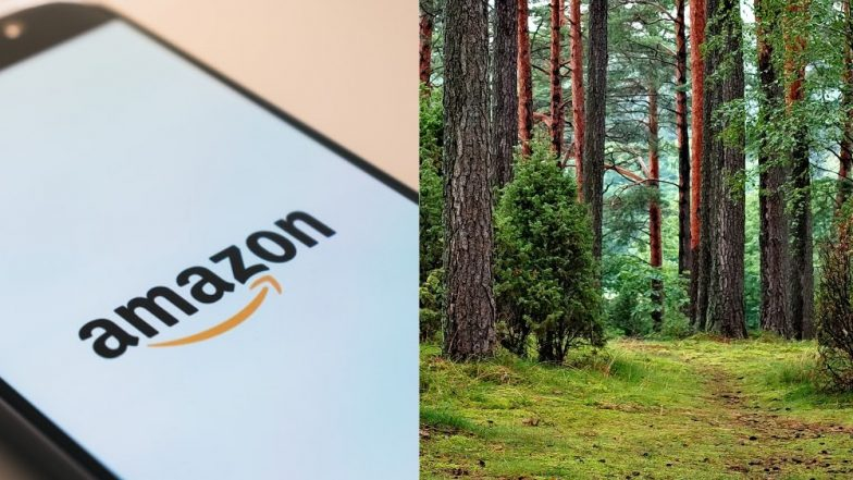 Amazon.com vs Amazon: South American Countries Wants to Share Governance of .Amazon Domain Name With E-Commerce Site