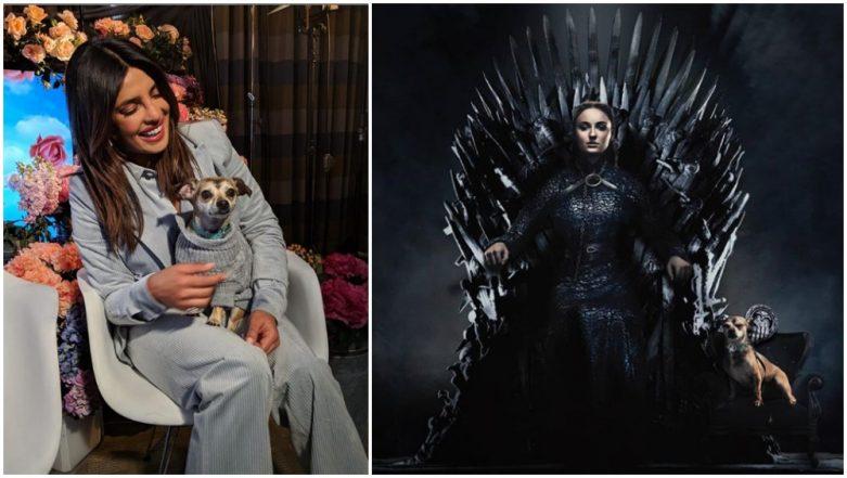 Game of Thrones Season 8: Besides Sophie Turner, Priyanka Chopra Jonas' Pet Diana Gets an Iron Throne! See Pic