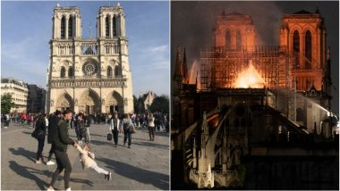 'The search is over!' Father-Daughter in Viral Photo Captured in Front of Notre Dame Cathedral Before Fire Identified