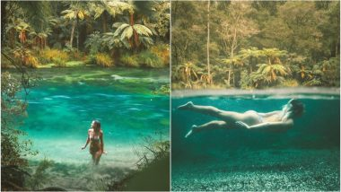 Australian Instagram Model Accused of Swimming in 'Sacred' Natural Springs in New Zealand, Rubbishes Claim (See Pictures)