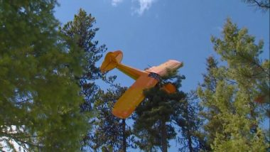 Small Plane Crash Lands on Top of Tree in Idaho, Firefighters Rescue Pilot (Watch Video)