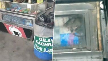 Rat Water Video Of Bandra Railway Station Goes Viral Days After Kurla's Nimbu Paani Episode