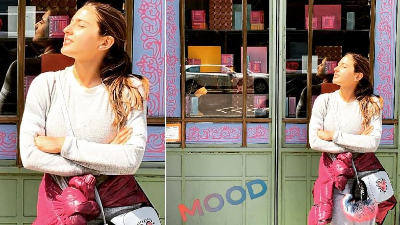 Sara Ali Khan's New York Holiday Posts are Proof that She is the Queen of Boomerangs (Watch Videos)
