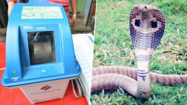 Snake Found Inside VVPAT Machine in Kannur Constituency in Kerala, Polling Affected