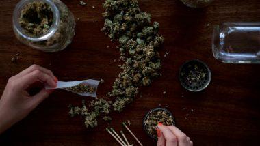 Arizona's Mint Dispensary, a Restaurant That Adds Marijuana to Everything