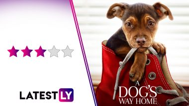 A Dog's Way Home Movie Review: A Predictable but Moving Treat for All Canine Lovers