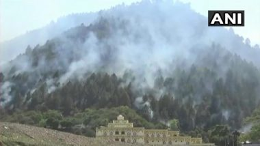 Uttarakhand: Wildfire Grips Forests of Tehri and Haldwani
