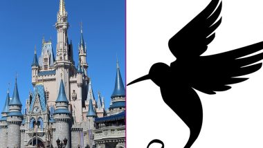 Woman Attacked By Bird at Disney World Sues Theme Park After Suffering Brain Injury