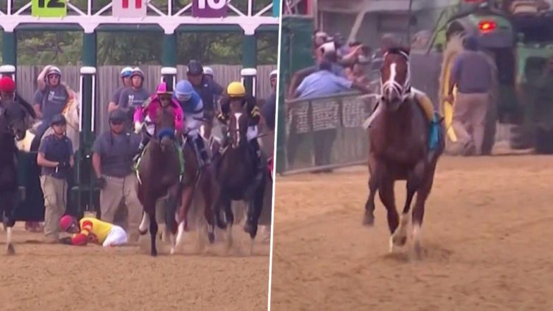 Bodexpress, the Horse That Ran Without a Jockey Hailed As the Real Hero of the 2019 Preakness and Not War of Will by Twitteratti for Winning Hearts!