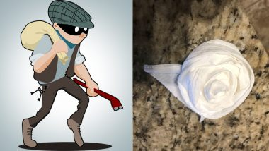 Burglar Breaks Into US Home, Cleans it and Leaves Origami Roses Made From Toilet Paper in Bathroom! (See Picture)