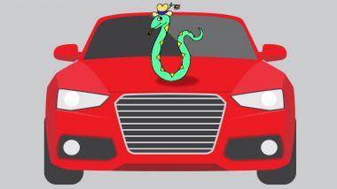 Cobra Enters Parked Car in Kasaragod Municipal Block Office in Kerala, Refuses to Leave
