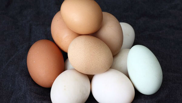 Dietary Cholesterol or Egg Consumption Does Not Increase the Risk of Stroke: Study