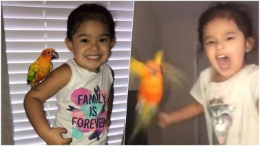 Real-Life Daenerys Targaryen? Little Girl Trains Her Parrot to Attack Whoever She Screams On; Watch Viral Video