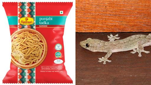 'Dead Lizard' Found in Food at Haldiram's, FDA Cracks Whip
