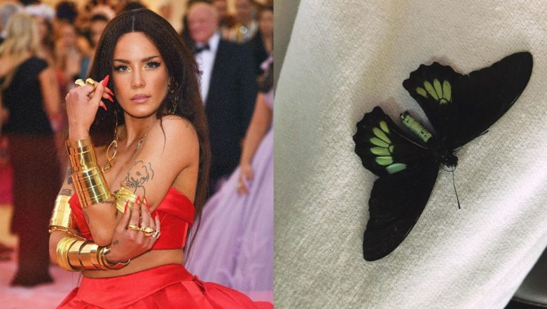 Halsey Accidentally Stubbed Her Toe While Trying To Save A Dead Butterfly!