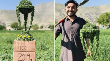 ICC Cricket World Cup 2019: Afghanistan Captain Gulbadin Naib's Brother Sharaf Naib Made World Cup Trophy From Grass (View Pics)