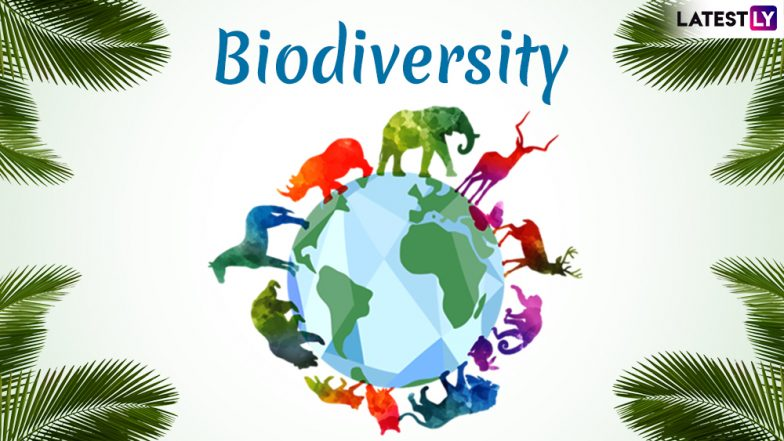International Day for Biological Diversity 2019: Date, Significance and History of the Day for Biodiversity Awareness