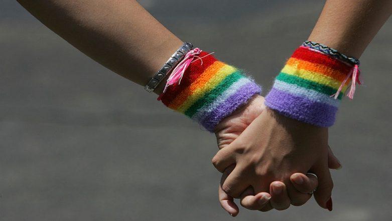 Rainbow Europe 2019 Rankings: Azerbaijan, Turkey, Armenia Worst For LGBT Community; Malta, Belgium Among Best