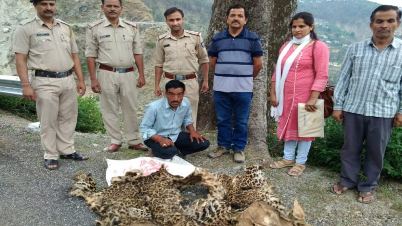 Himachal Pradesh: Police Arrests a Man With Two Leopard Skins in Chowari