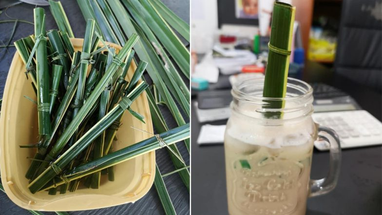 Philippines' Cafe Uses Straws Made of Coconut Leaves, Impressive Initiative Against Use of Plastic Praised Online