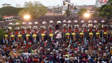 Thrissur Pooram 2019: The Spirit of Kerala's Largest Temple Festival Through Photos