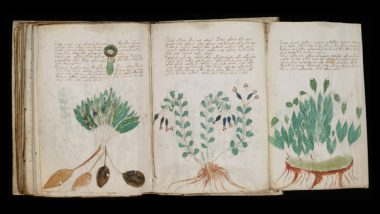 Voynich Manuscript, the Mysterious Codex That Confused the World for Centuries, Decoded, Says Expert