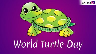 World Turtle Day 2019: Know 8 Interesting Facts About These Sea Creatures