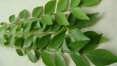 Weight Loss Tip of the Week: How to Use Kadi Patta (Curry Leaves) to Lose Weight