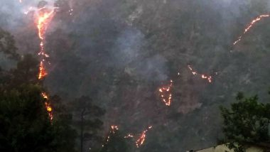 Uttarakhand Forest Fires: Massive Wildfires Continue to Spread in Tehri Forests, Almora, Nainital Worst Hit; See Pics