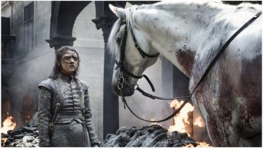 Game of Thrones 8 Episode 5: What's the Meaning of the White Horse That Saves Arya Stark in King's Landing?