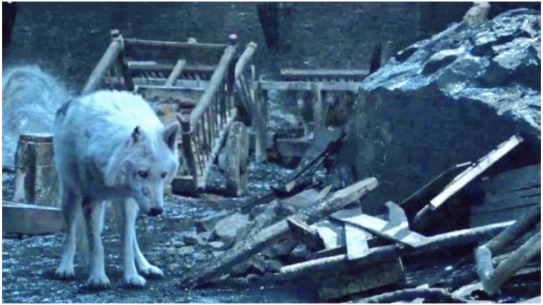 Game Of Thrones Prequel Will Have the Stark Family, Direwolves and White Walkers Confirms Author George RR Martin
