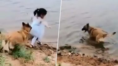 Dog Saves Girl from Falling and Drowning, Viral Video Leaves Internet in Tears