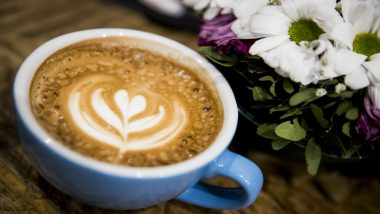 World Environment Day 2019: Barista Launches Campaign to Gift Plant Seeds to Customers