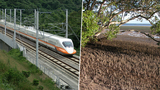 Bullet Train's Cost on Nature: 54,000 Mangroves to Be Uprooted in Maharashtra Alone