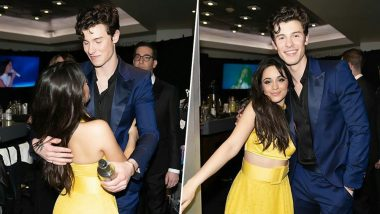 Shawn Mendes and Camila Cabello Send Fans Into a Frenzy With a New Clip on Twitter, Hinting Another Collab