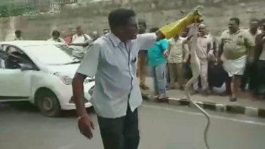 Snake, 8-Feet-Long, Found Inside Car Bonnet in Tirumala, Andhra Pradesh; Watch Video