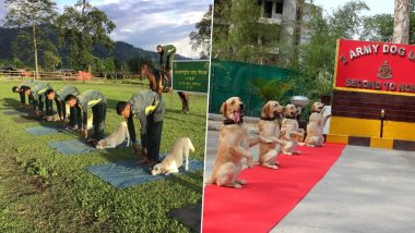 International Day of Yoga 2019: Dogs Of Indian Army and ITBP Dog Squads Perform Asanas With Jawans; Watch Cute Pics and Videos