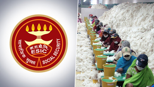 Narendra Modi Government Reduces ESIC Contribution From 6.5% to 4%, Likely to Benefit 3.6 Crore Employees in India