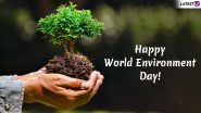 Happy World Environment Day 2020 Quotes and WED Wishes: WhatsApp Stickers, Slogans, GIF Images, SMS and Messages to Wish Everyone on  Vishwa Paryavaran Diwas!