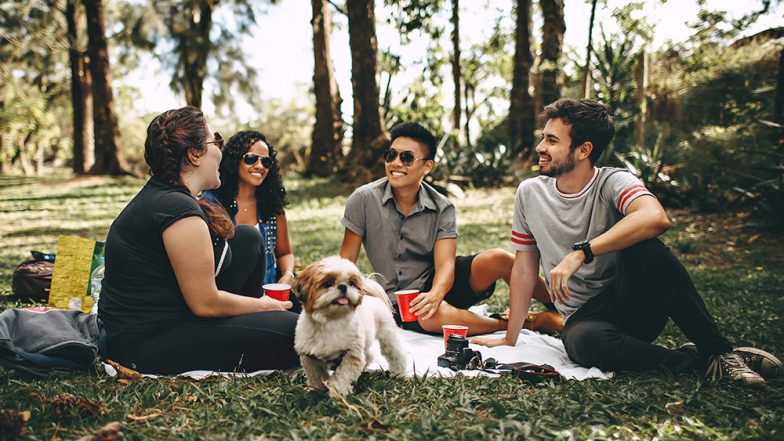 International Picnic Day 2019: Date and Significance of the Day That Encourages You to Take a Break