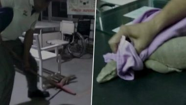 Monitor Lizard in a Haryana Hospital! 3-Foot-Long Reptile Found in Emergency Ward in Fatehabad Govt Hospital